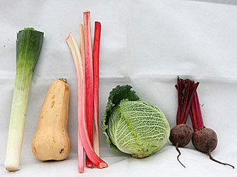 Английская полиция организовала процедуру опознания овощей