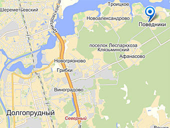 Задержан подозреваемый в убийстве женщины и ребенка в Подмосковье