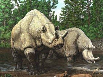 Фауна позднего эоцена. Иллюстрация Carl Buell