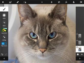 Сенсорный Photoshop вышел на iPad