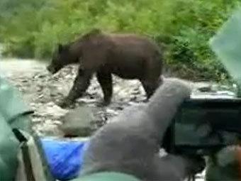 http://img.lenta.ru/news/2012/03/01/bear/picture.jpg