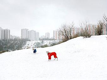 Александр Гронский, Без названия, 2009. Фото с сайта fotofest.org