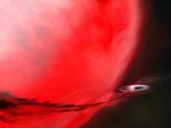 http://img.lenta.ru/news/2012/03/21/supernova/picture.jpg