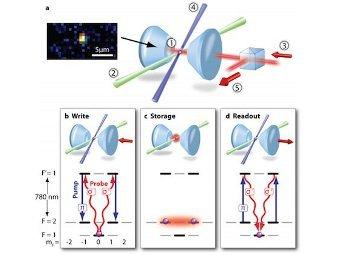 Атом рубидия в оптической ловушке