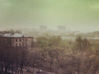 Mysterious Green Dust Covering Moscow Picture