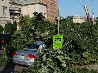 Последствия шторма в столице США - Вашингтоне. Фото ©AFP