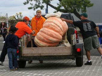 Фото с сайта fairfieldcitizenonline.com