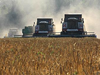 Правительство вновь понизило прогноз по урожаю зерна