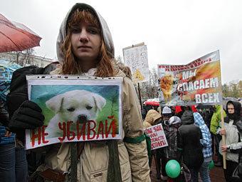 """Участники митинга против """"догхантеров"""", 28 октября 2012 года. Фото РИА Новости, Евгений Биятов"""