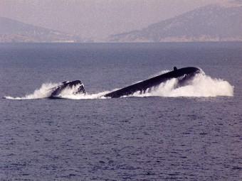 Tipo de proyecto 209 submarinos diesel-eléctricos.  Foto de denizaltici.com