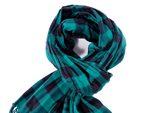 Модный мужской аксессуар зимы 2011: клетчатый шарф.